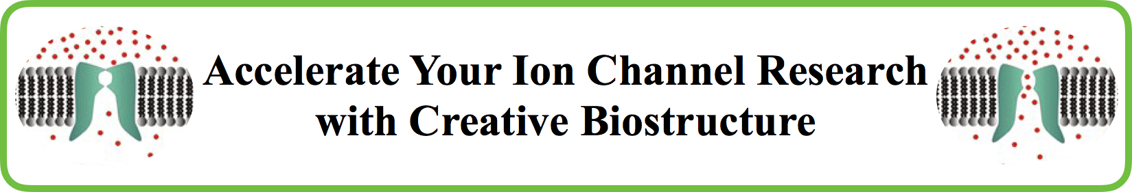 Discovery Program for Ion Channel Targets
